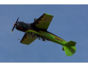 Полет на самолете ЯК-52