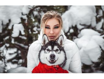 Фотосессия с Сибирскими Хаски
